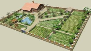 Как спланировать садовый участок